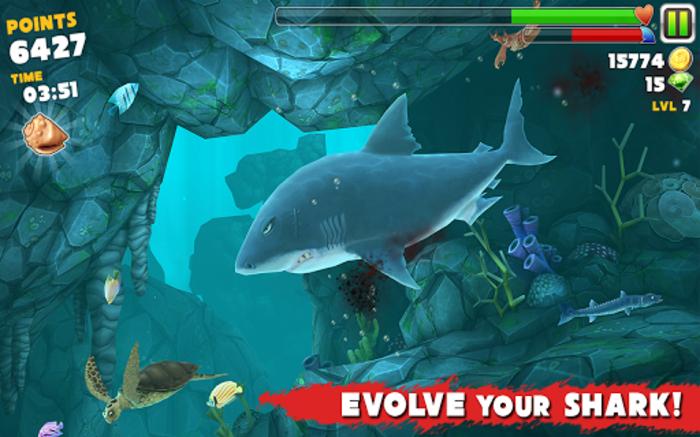 hangry shark