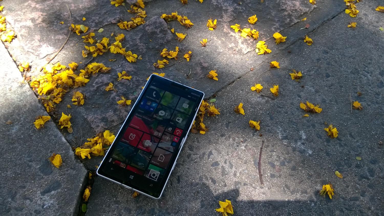 Capturada com a câmera principal do Lumia 730