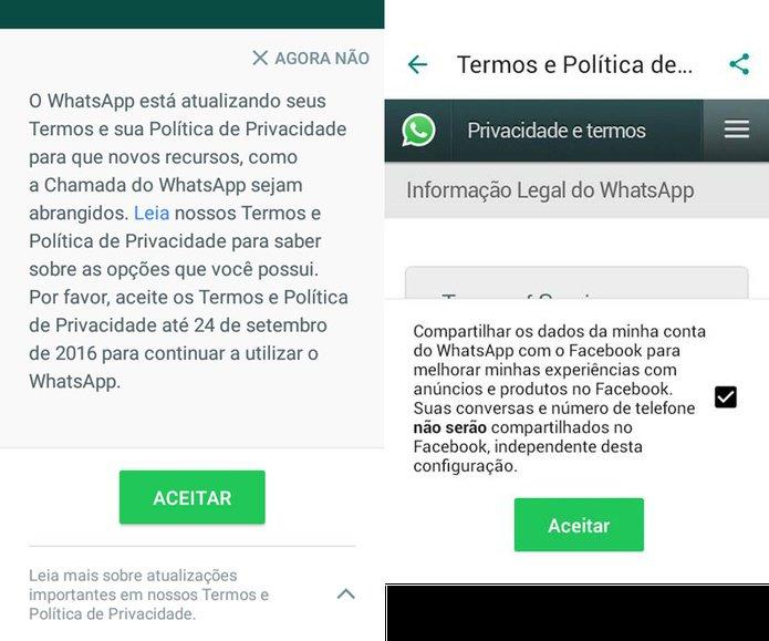 Whatsapp termos